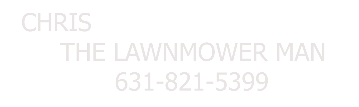 The Lawnmower Man Logo
